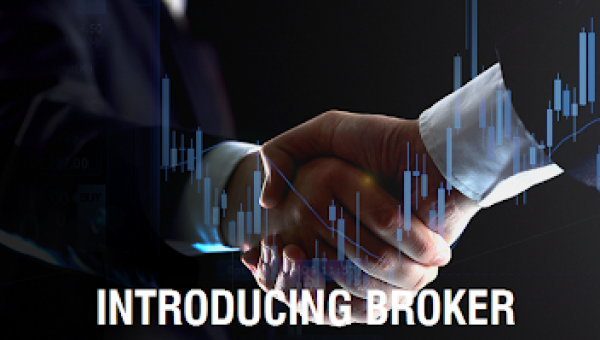 What is the difference between White Label and Introducing Broker?